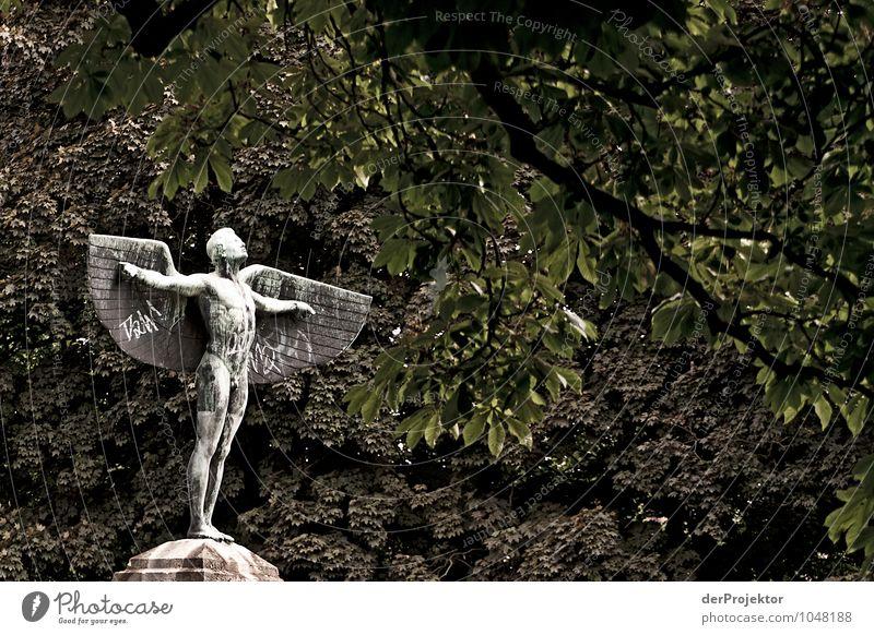 Auf zur Sonne Natur Ferien & Urlaub & Reisen Pflanze Landschaft Tier Wald Umwelt Gefühle Berlin Freiheit Stimmung Park Kraft Tourismus Ausflug Coolness