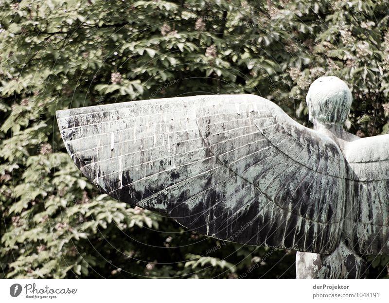 Starker Flügelschlag Natur Ferien & Urlaub & Reisen Pflanze Sommer Landschaft Umwelt Gefühle Berlin Glück fliegen Park maskulin Tourismus Kraft Erfolg