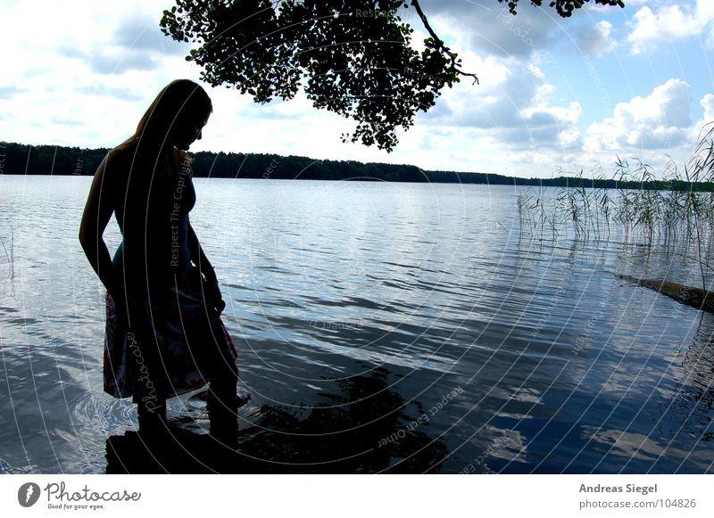 Shadow Beauty Frau Jugendliche Wasser schön Himmel Baum Sonne Sommer Ferien & Urlaub & Reisen Blatt Wolken See Küste Horizont Brandenburg Hölzerner See