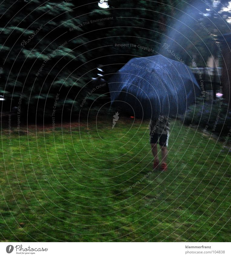Lokaler Schauer #50 blau grün Baum Gras Garten Regen Schuhe Rasen Regenschirm Junger Mann Hose Zaun Tanne schlechtes Wetter Fichte Nadelbaum
