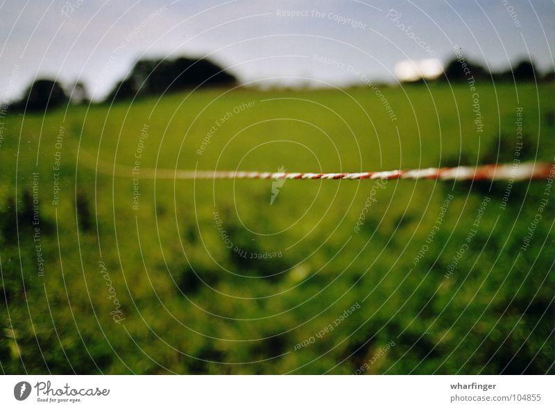 kabel och landskap Sösdala weitläufig Schweden lang Haus grün rot weiß rot-weiß Horizont Wiese Trennlinie Grenze Zaun Elektrisches Gerät Elektrizität
