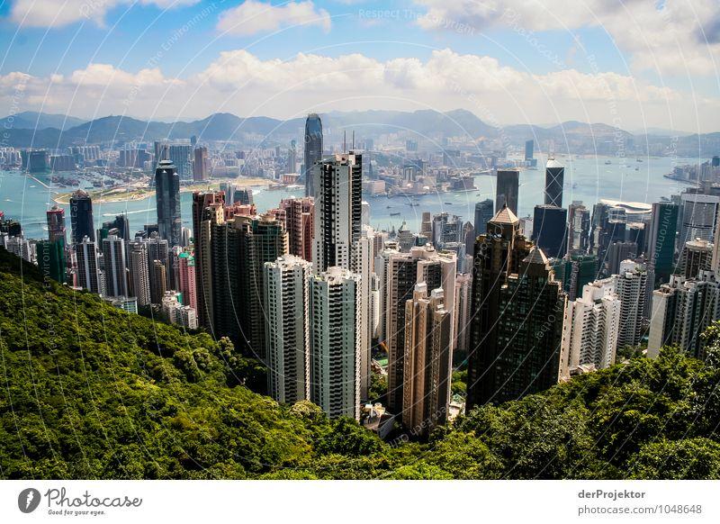 Eine seltene Sicht heutzutage in Hongkong Natur Ferien & Urlaub & Reisen Stadt Sommer Baum Meer Landschaft Ferne Wald Umwelt Berge u. Gebirge Architektur