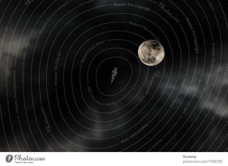 Mond in Wolken Natur Himmel Nachthimmel Vollmond leuchten Ferne hoch rund Farbfoto Außenaufnahme Menschenleer Starke Tiefenschärfe