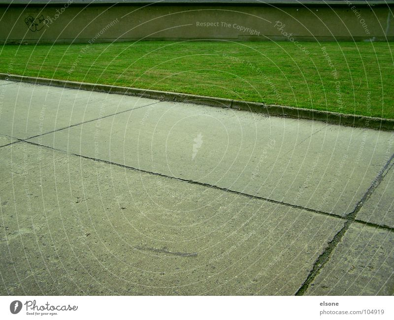 missing flowers Beton Teer grau trist Streifen Bordsteinkante Ecke Wiese Gras grün Mauer Wand Garage Zone Gebäude Einsamkeit sehr wenige leer Riesa verfallen