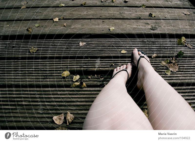 Der Herbstchill kalt Holz Steg Flipflops Zehen Blatt Wind trüb trist braun dunkel September Oktober November Erholung Langeweile Frau Herbstferien Schuhe Fuß