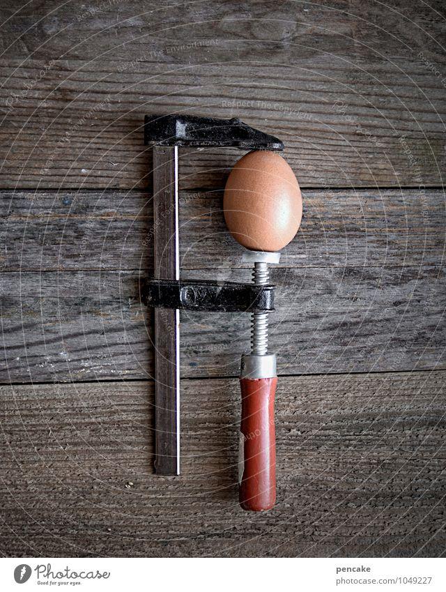 druckaufbau Lebensmittel Wissenschaften Holz Zeichen Selbstbeherrschung standhaft Stress Hühnerei braun Schraubzwinge schrauben Testobjekt Versuch