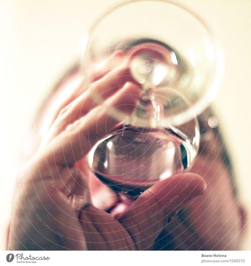 hochprozentig | damit die Stimmung steigt Farbe rot Freude Stil Glas ästhetisch genießen Getränk Lebensfreude Kultur trinken lecker Wein Leidenschaft