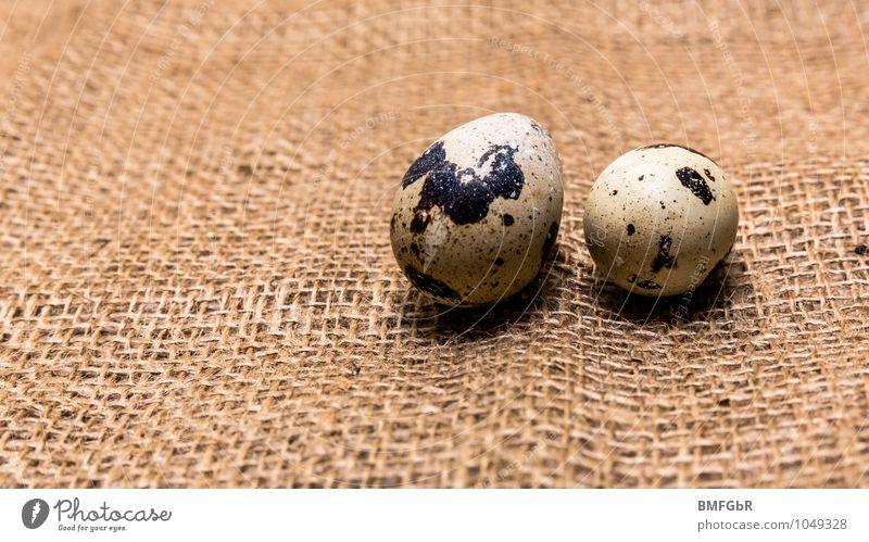 Kleine Frühstückseier Lebensmittel Ei Ernährung Bioprodukte Fingerfood Wachtelei Qualität sparsam Umwelt Umweltschutz Gesunde Ernährung Cholesterin Leinen