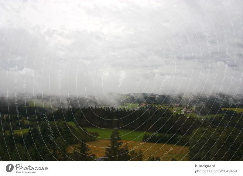 When The Smoke Is Going Down Himmel Natur Ferien & Urlaub & Reisen Pflanze grün Sommer Landschaft Wolken Wald schwarz Berge u. Gebirge Umwelt natürlich grau