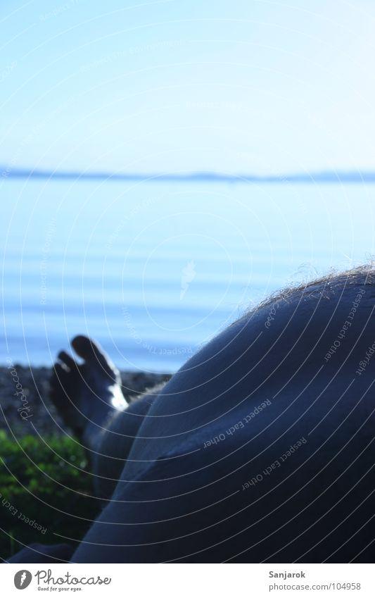 bavarian beerbelly Mann Wasser Sonne Meer blau Sommer Strand Ferien & Urlaub & Reisen ruhig Fuß See Beine Küste Wellen liegen Freizeit & Hobby