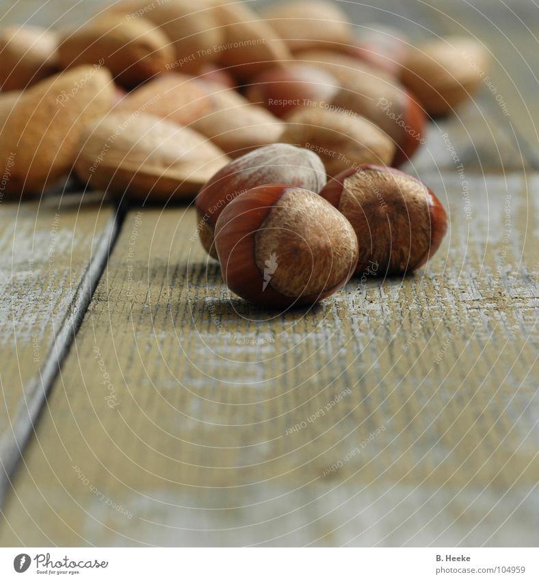 Squirrel's delight Herbst Holz 3 Ernte Nuss Eichhörnchen Mandel