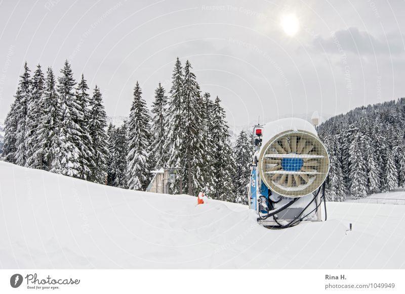 Nachhilfe II Umwelt Natur Landschaft Wolken Winter Alpen Berge u. Gebirge hell Zugspitze Schneekanone Tanne Farbfoto Gedeckte Farben Außenaufnahme Menschenleer