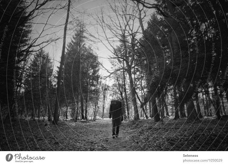 walking dead Ausflug wandern Halloween Mensch Mann Erwachsene 1 Umwelt Natur Herbst Winter Wald Mantel gehen gruselig Spazierweg Schwarzweißfoto Außenaufnahme