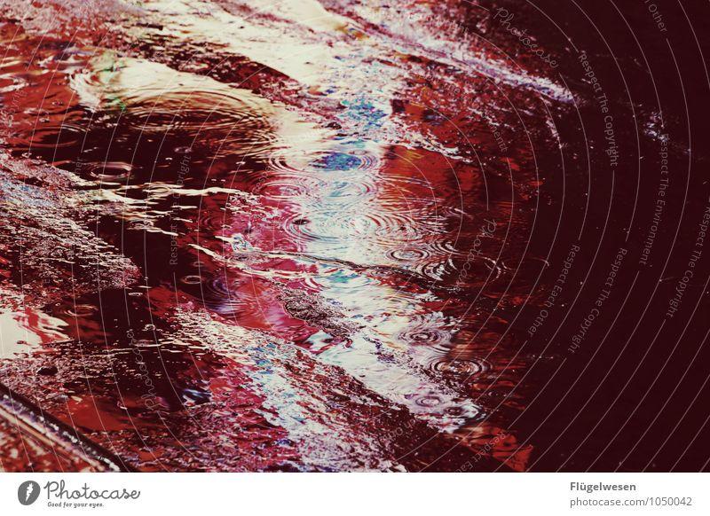 NYC Lights 20 Sightseeing Städtereise Unwetter Wind Sturm Regen Stadtzentrum Fußgängerzone Skyline überbevölkert Straße Straßenkreuzung Wege & Pfade Stiefel