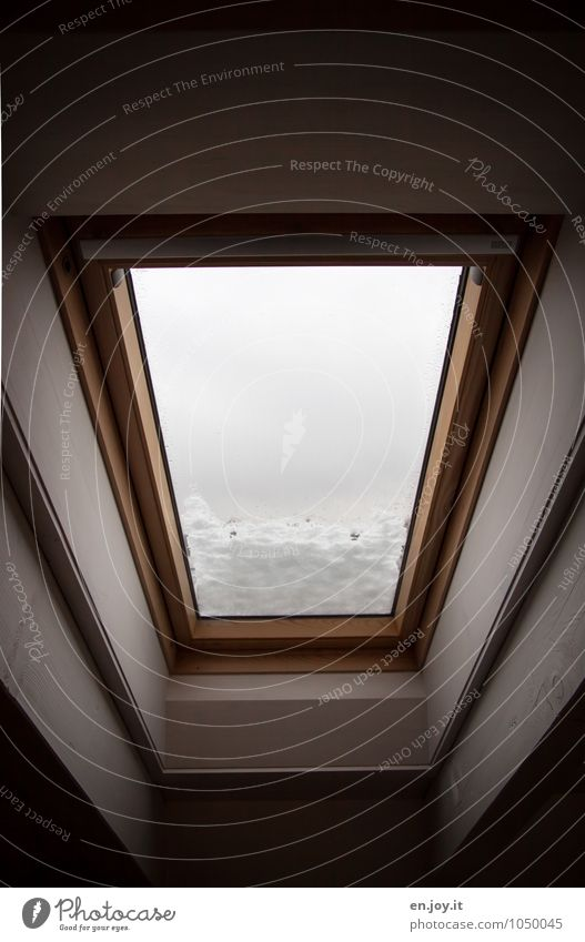 ...sag ich doch Häusliches Leben Wohnung Innenarchitektur Fenster Dachfenster Penthouse Dachgebälk Himmel Winter Klima schlechtes Wetter Schnee dunkel schwarz