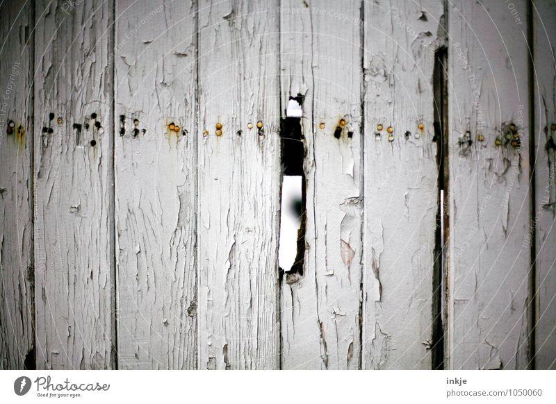 -----i---- Menschenleer Mauer Wand Zaun Zaunlücke Loch Holzzaun Bretterzaun Nagel alt kaputt trist Neugier Verfall Vergänglichkeit Farbfoto Gedeckte Farben