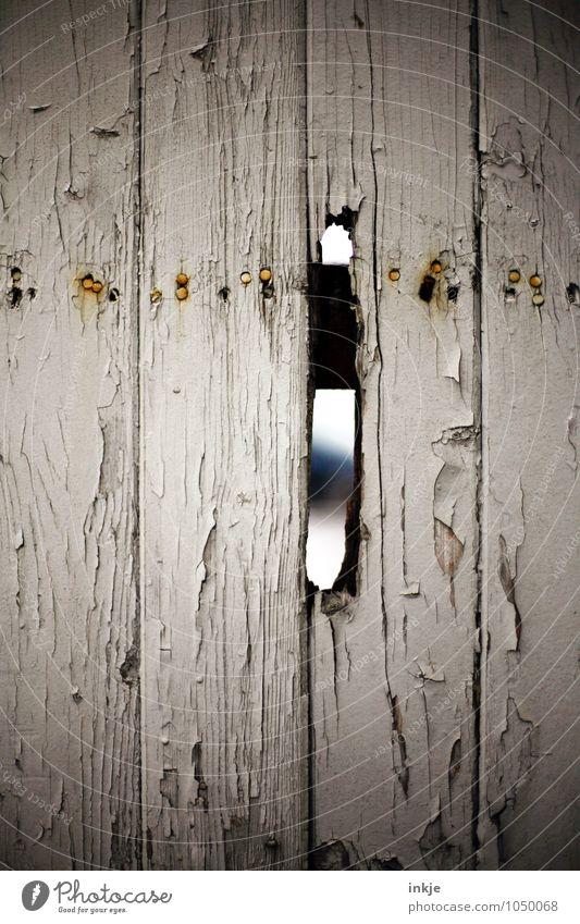 --I-- Menschenleer Mauer Wand Zaun Bretterzaun Holzzaun Lücke Loch alt kaputt trist Neugier Verfall Farbfoto Außenaufnahme Nahaufnahme Detailaufnahme