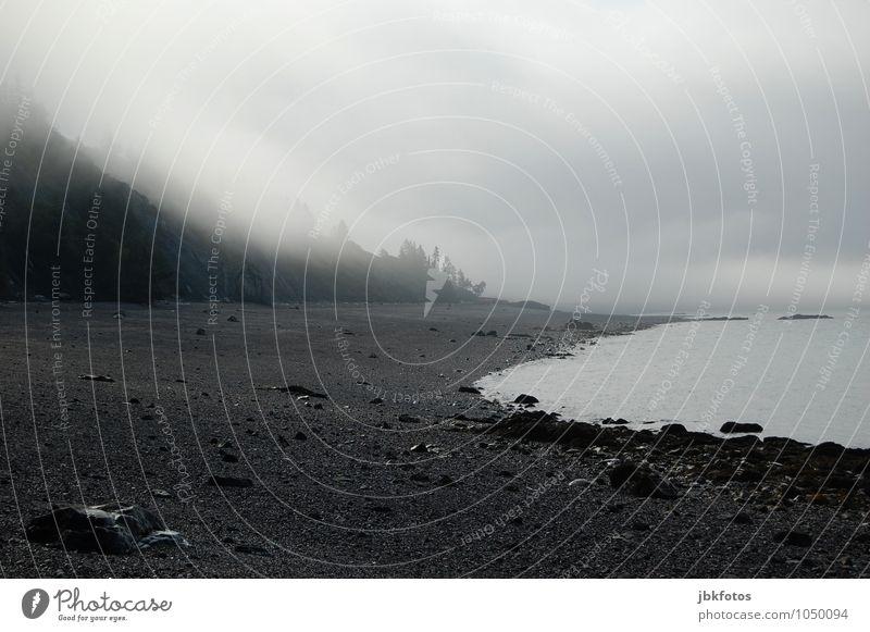 Weltuntergangsstimmung mit Nebel Umwelt Natur Landschaft Urelemente Wasser Himmel Wolken Horizont Frühling Sommer Herbst Unwetter Regen Gewitter Baum Hügel