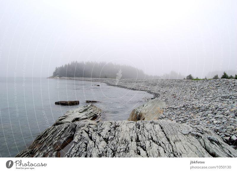 GRAU IN GRAU Umwelt Natur Landschaft Urelemente Wasser Himmel Wolken Horizont Sommer Herbst Klima schlechtes Wetter Nebel Pflanze Baum Küste Seeufer Meer