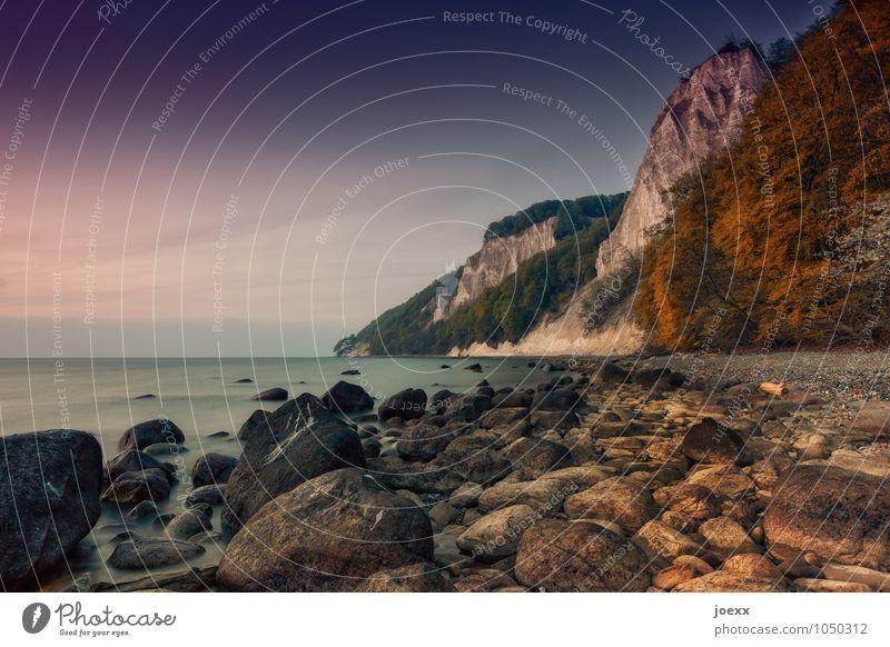 Liebe, Glaube, Hoffnung Landschaft Himmel Schönes Wetter Küste Ostsee Stein alt hoch schön braun grün Farbfoto Gedeckte Farben mehrfarbig Außenaufnahme