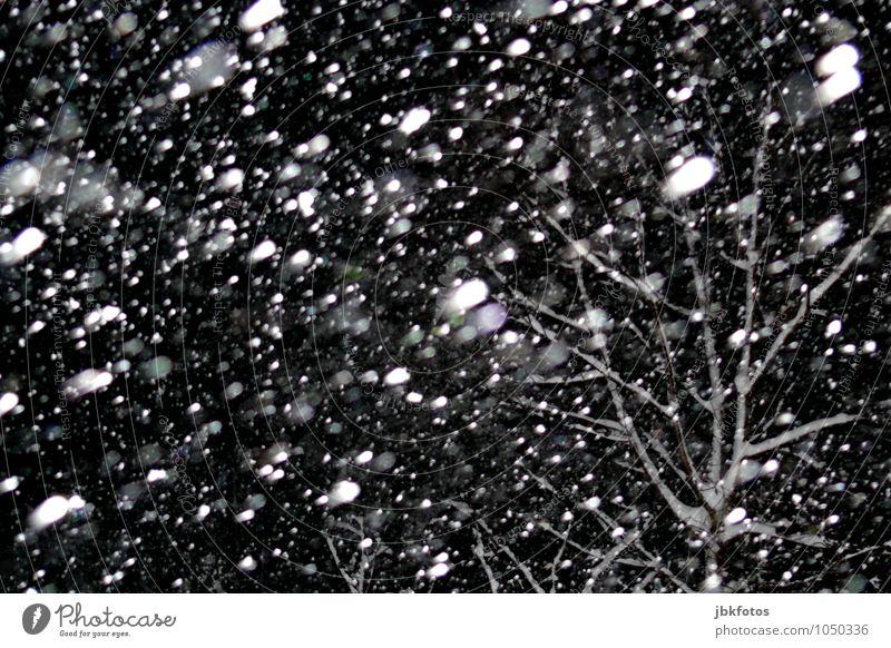 What the f***! Umwelt Natur Urelemente Wasser Winter Wetter Unwetter Eis Frost Schnee Schneefall Stimmung Lebensfreude Hoffnung Angst schön Schneeflocke