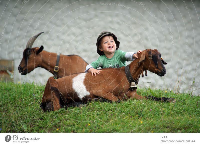 Ziegenhirt Jakob Mensch Kind Freude Kindheit Landwirtschaft Bauernhof Hut Haustier Landwirt kuschlig Ziegen 3-8 Jahre Streicheln Hirte Streichelzoo Bergbauer