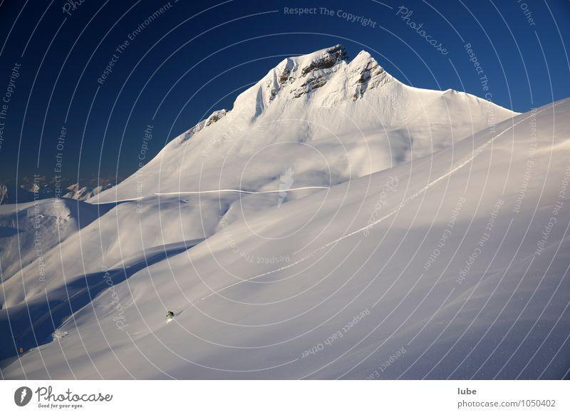 Einsamer Freerider Sport Wintersport Skier Umwelt Natur Landschaft Wolkenloser Himmel Schönes Wetter Alpen Berge u. Gebirge Gipfel Schneebedeckte Gipfel blau