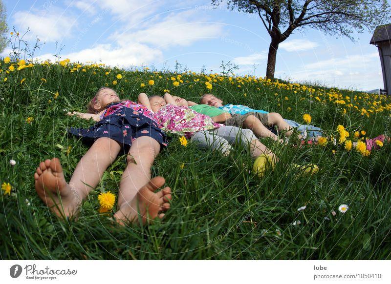 In der Wiese liegen Mensch Kind Natur Pflanze grün Erholung ruhig Frühling Glück Freundschaft Zufriedenheit Kindheit schlafen Pause 8-13 Jahre