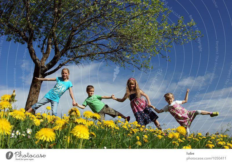 Frühling Freude Glück Mensch Kind Kindheit 4 3-8 Jahre Umwelt Natur Landschaft Schönes Wetter Blume Gras Wiese Fröhlichkeit Frühlingsgefühle Freundschaft