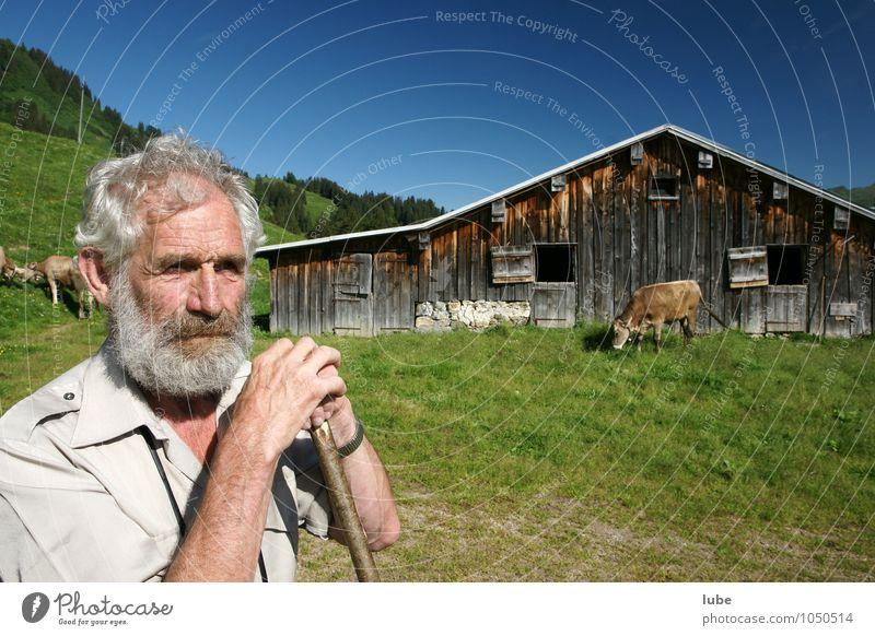 Bergbauer 2 Landwirtschaft Forstwirtschaft maskulin Männlicher Senior Mann Großvater 1 Mensch 60 und älter Umwelt Natur Landschaft Sommer Berge u. Gebirge alt