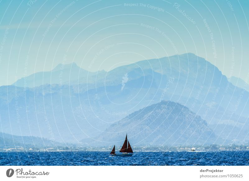 Mallorca von seiner schönen Seite 14 – mit roten Segeln Natur Ferien & Urlaub & Reisen Pflanze Sommer Meer Landschaft Tier Ferne Umwelt Berge u. Gebirge Gefühle