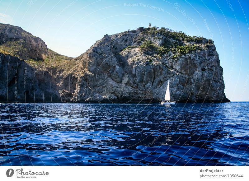 Mallorca von seiner schönen Seite 54 – in den schönsten Farben Natur Ferien & Urlaub & Reisen Pflanze Sommer Meer Landschaft Tier Ferne Umwelt Berge u. Gebirge