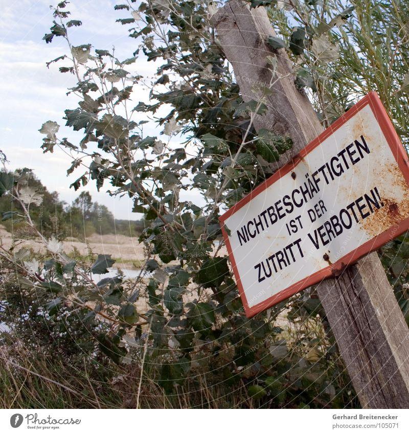 Umkehrschluss Wasser alt Arbeit & Erwerbstätigkeit Holz See Schilder & Markierungen geschlossen Trauer trist Sträucher Vergänglichkeit verfallen Hinweisschild