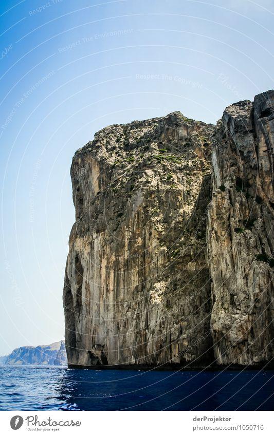 Mallorca von seiner schönsten Seite 22 - Schroff und Schön Natur Ferien & Urlaub & Reisen Pflanze Sommer Meer Landschaft Tier Ferne Umwelt Berge u. Gebirge