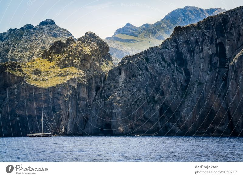 Mallorca von seiner schönsten Seite 11 - mit Segelboot Natur Ferien & Urlaub & Reisen Pflanze Sommer Meer Landschaft Tier Ferne Umwelt Berge u. Gebirge Gefühle