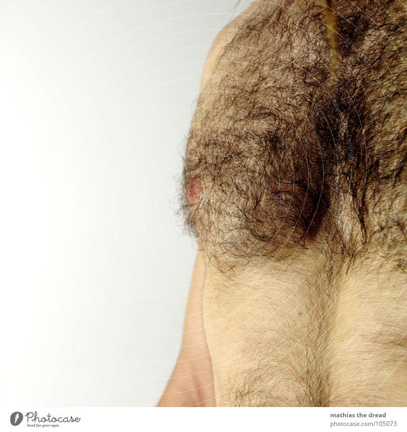 Brusthaar Mann dunkel Haare & Frisuren Wärme Körper Haut Arme maskulin Wachstum mehrere Physik Wildtier viele unrasiert