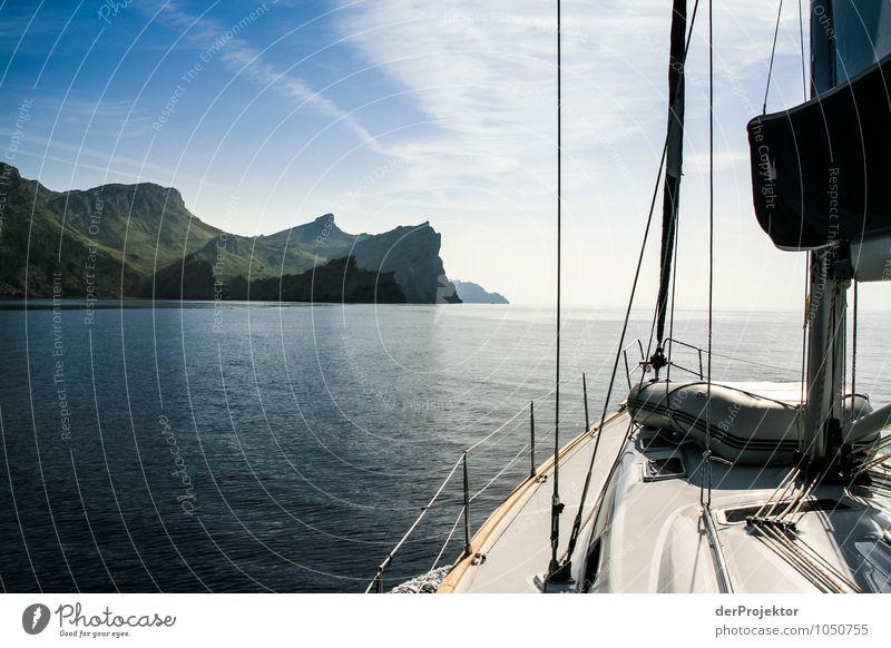 Mallorca von seiner schönsten Seite 21 - vom Segelboot aus Natur Ferien & Urlaub & Reisen Pflanze Sommer Meer Landschaft Tier Ferne Umwelt Berge u. Gebirge