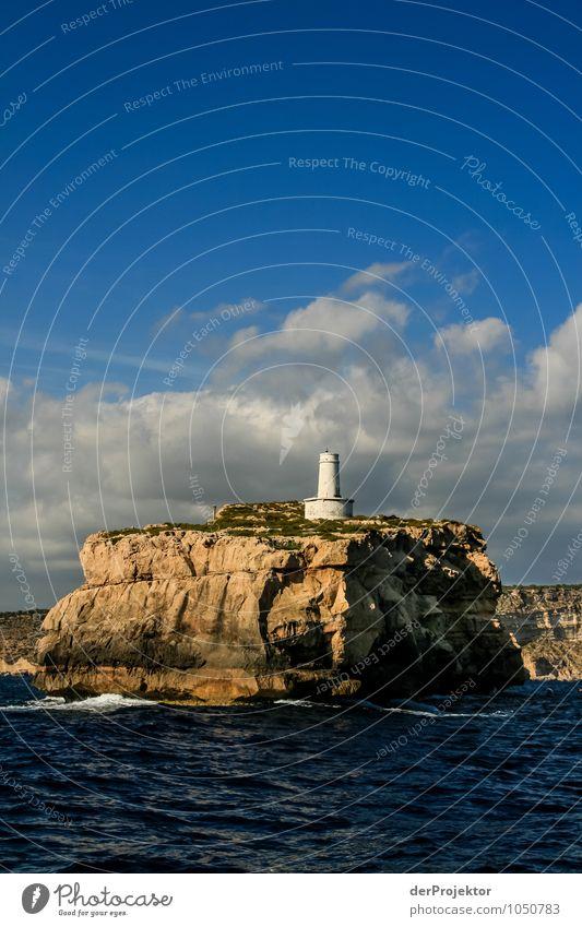 Mallorca von seiner schönsten Seite 25 - El Torro Santa Ponca Ferien & Urlaub & Reisen Tourismus Ausflug Ferne Freiheit Umwelt Natur Landschaft Pflanze