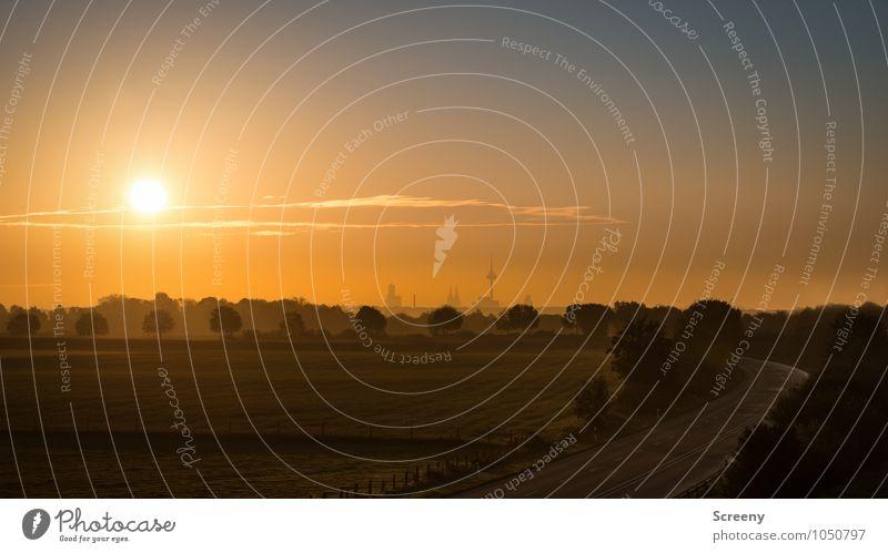 Guten Morgen, Köln (#2) Himmel Stadt Sommer Sonne Landschaft Wolken Ferne Umwelt Straße Wiese Wege & Pfade leuchten Hochhaus Schönes Wetter Wandel & Veränderung