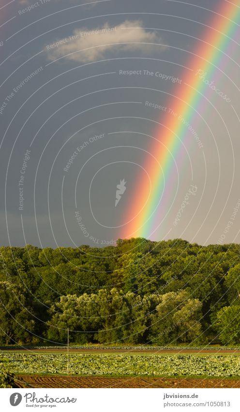 Foto oder Goldtopf? Foto oder... ach egal Foto... Himmel Natur blau grün Wasser rot Landschaft Wolken Umwelt Luft Regen orange Feld Beginn Landkreis Regen violett