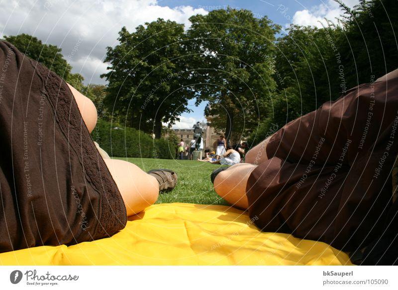 die gelbe pelerine Picknick Erholung Spielen Ferien & Urlaub & Reisen Ausflug Mensch Beine Himmel Baum Gras Park Hose Schuhe liegen schlafen braun Müdigkeit