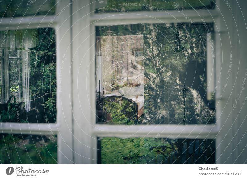 Spiegel im Spiegel Lifestyle harmonisch Wohlgefühl Zufriedenheit Erholung ruhig Meditation Duft Ferne Freiheit Wohnung Schreibtisch Stuhl Bett Tapete Wohnzimmer