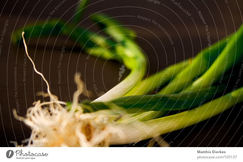 FrÜHLINGSZWIEBELN II Frühling Frühlingszwiebel Küche kochen & garen Kräuter & Gewürze verfeinern lecker Gesundheit Geschmackssinn grün Ernährung Sommer Mahlzeit