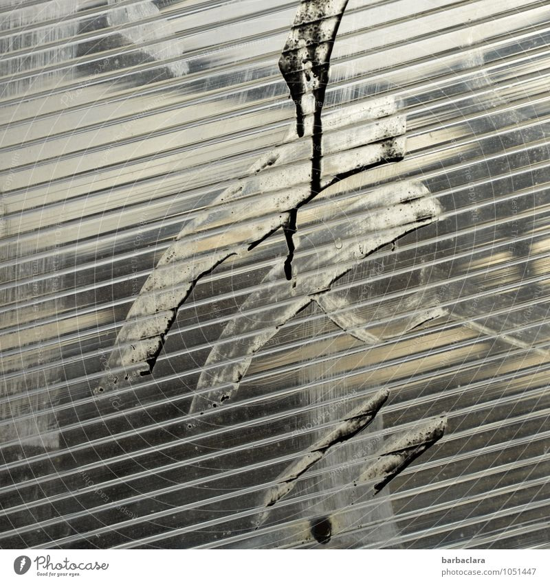 Experiment | Kunstwerk Bauwerk Fassade dreckig Glas Kunststoff Zeichen Linie Streifen schwarz silber weiß ästhetisch bizarr Design Farbe Kreativität skurril
