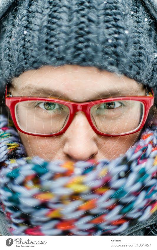 Mit Lifestyle Stil Mensch feminin Frau Erwachsene Leben Auge Nase 1 30-45 Jahre Winter Eis Frost Schnee Bekleidung Brille Schal Mütze Blick Wärme grau rot