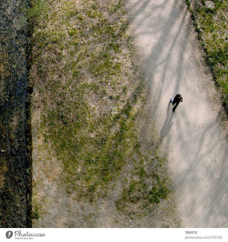 YOU'VE COME A LONG WAY, BABY Mensch Natur grün Einsamkeit Erholung Wiese Herbst Wege & Pfade klein Garten Luft Park gehen laufen nass frisch