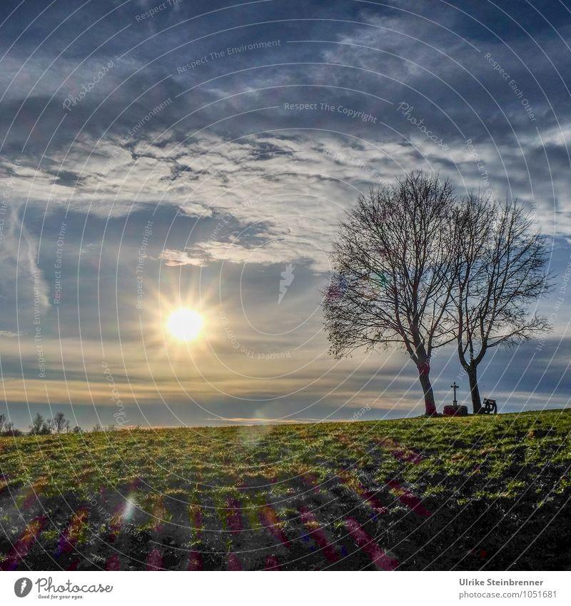 Wetter | Tag der Sonne Umwelt Natur Landschaft Erde Luft Himmel Wolken Horizont Frühling Winter Schönes Wetter Pflanze Baum Gras Wiese Feld Kreuz Erholung