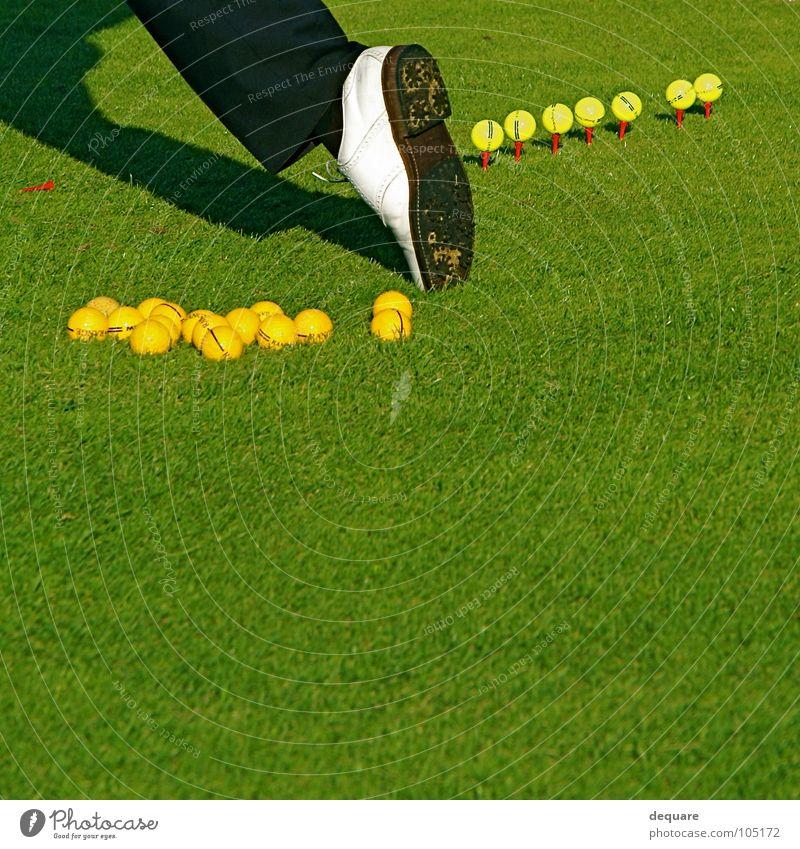 Golf Pro Schuhe Golfschuhe Gras grün ruhig perfekt Wiese Golfer Sport Spielen Freizeit & Hobby Rasen Ball professional Tee stollenschuh fairway golftee holztee