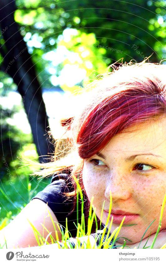 Tagträumerin Frau Baum Sonne grün rot Sommer Gesicht Auge Wiese Gras träumen Haare & Frisuren Nase Lippen