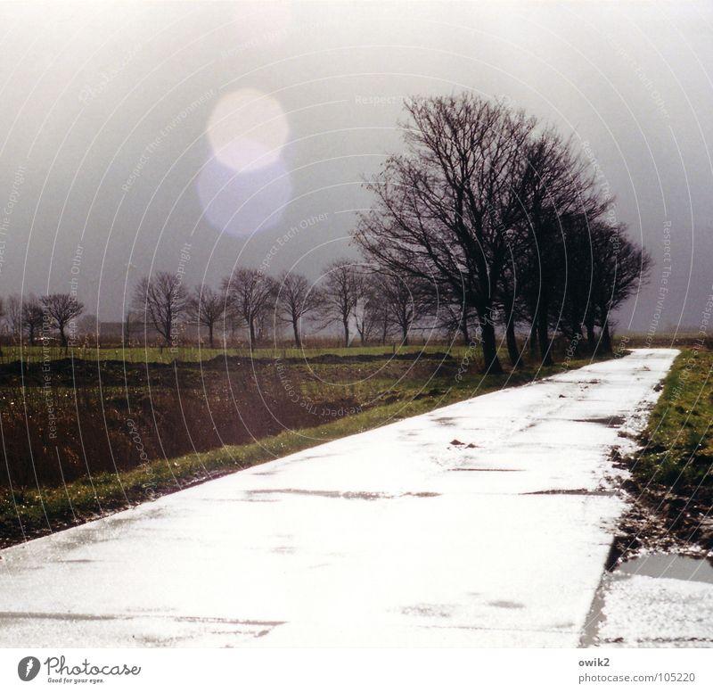 ... und Fuge d-moll Himmel Natur Baum Landschaft Umwelt Straße Traurigkeit hell Horizont Feld leuchten Verkehr Klima Schönes Wetter Neigung erleuchten